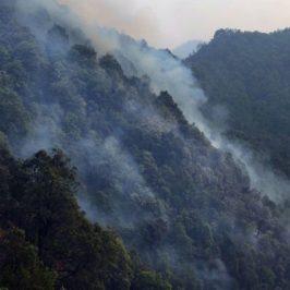 Gli incendi boschivi minacciano l'Himalaya
