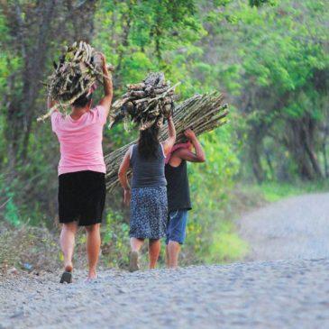 Amazzonia: Bolsonaro presenta la legge per le miniere nelle aree indigene