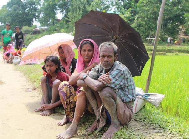 Quasi 300mila i Rohingya fuggiti in Bangladesh