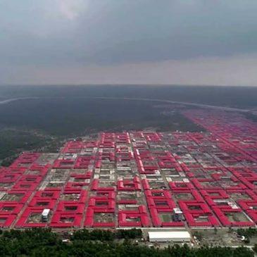 Bhasan Char, l'isola dei Rohingya