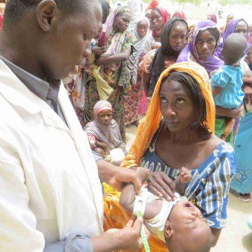 Emergenza profughi: gli aggiornamenti dal Nord del Camerun
