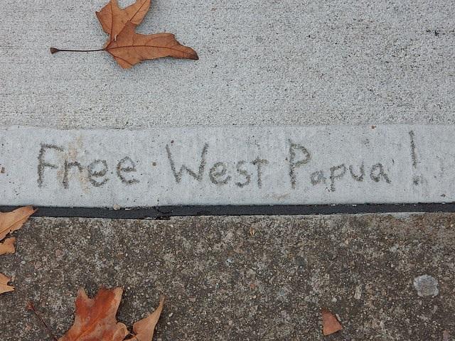 Indonesia, perché riesplode la questione Papua