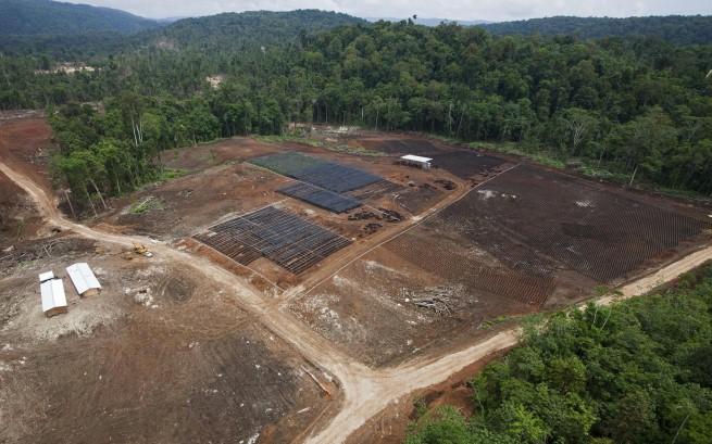 Papua Nuova Guinea: espulso missionario impegnato per diritto alla terra