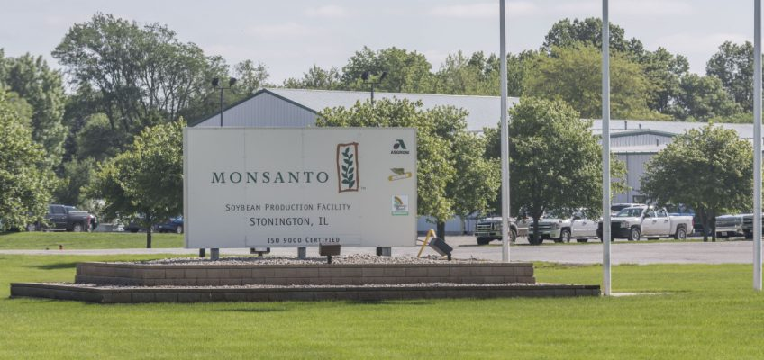 La Monsanto sotto processo all'Aia