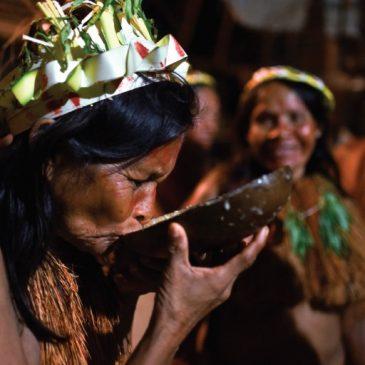 Amazzonia pronti per il Sinodo