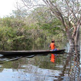 L'Amazzonia sta perdendo anche l'acqua