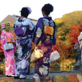 I colori dell'Asia