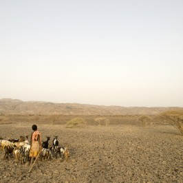 L'Etiopia fra land grabbing e carestia
