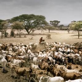 Siccità: 12 milioni di euro dall'Italia per l'Etiopia