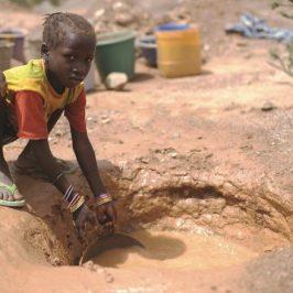 Nord del Camerun, emergenza fame