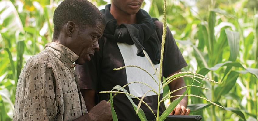L'Africa e la riscossa degli agricoltori 2.0