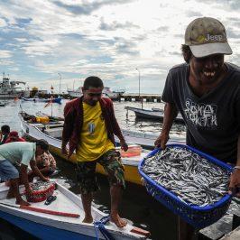 Pesca: entra in vigore la Convenzione che tutela il lavoro