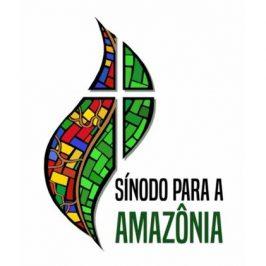 «Mondo e Missione», l'Amazzonia e il Sinodo