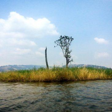 Un'isola in Uganda e la resilienza