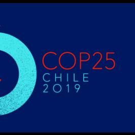 Il Cile scosso dalle proteste rinuncia alla Cop25