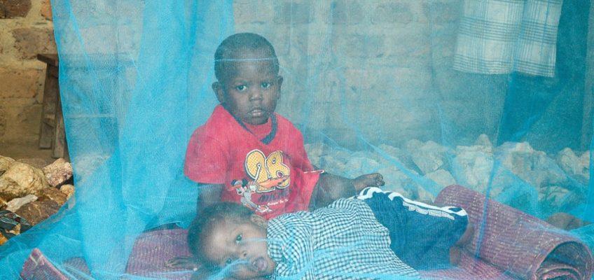 Malaria, una piccola Sofia ogni due minuti nel mondo