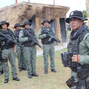 Messico, l'esercito che difende gli avocado