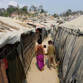 Che fine hanno fatto i Rohingya?