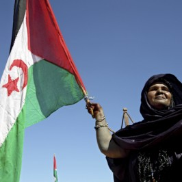 Saharawi. Quarant'anni di solitudine