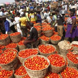 Cibo: a Dakar le città africane si mettono in rete sulla scia di Expo